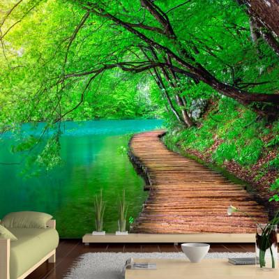 Fototapeta - Zielony spokój
