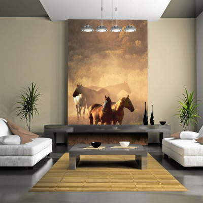 Fototapeta - Dzikie konie...