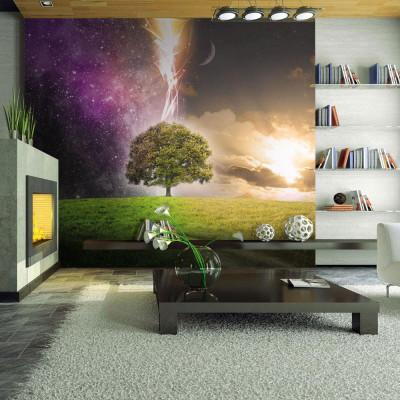 Fototapeta - Magic tree