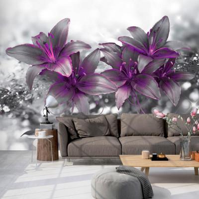 Fototapeta - Sekret lilii